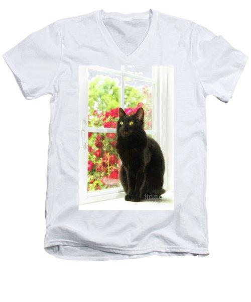 Black Cat In White Frames Men's V-Neck T-Shirt