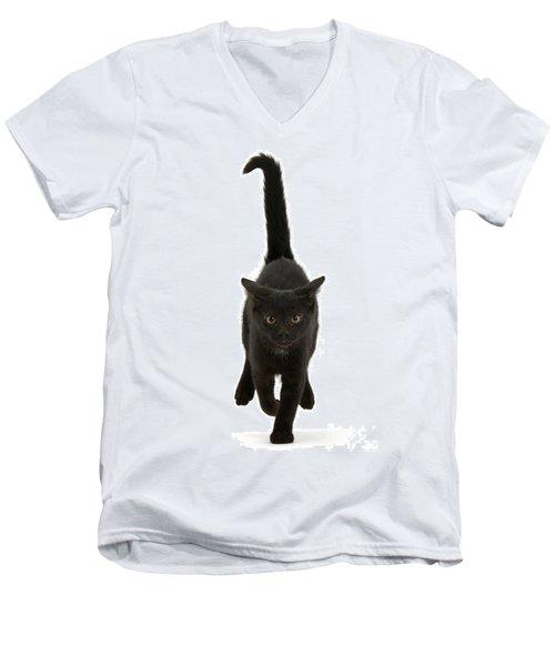Black Cat On The Run Men's V-Neck T-Shirt