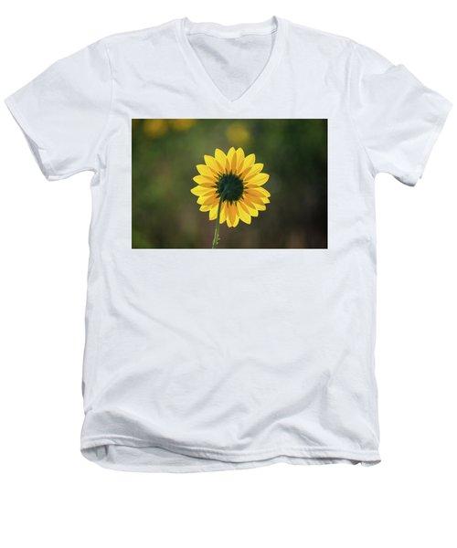Black-eyed Susan Men's V-Neck T-Shirt