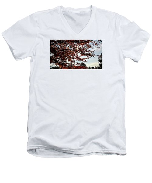 Blister  Men's V-Neck T-Shirt by Jana E Provenzano