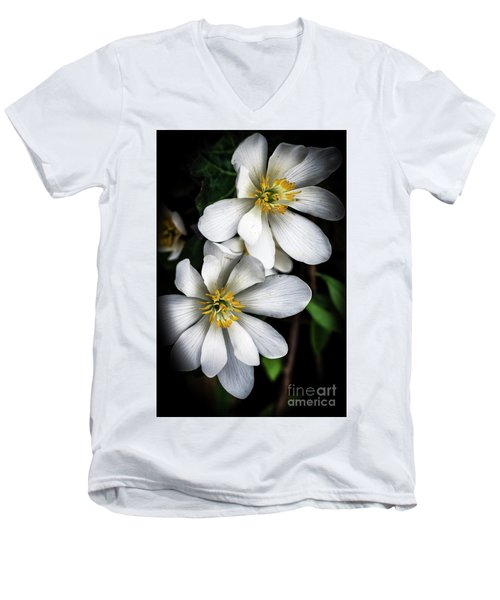 Men's V-Neck T-Shirt featuring the photograph Bloodroot In Bloom by Thomas R Fletcher