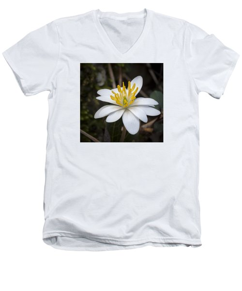 Men's V-Neck T-Shirt featuring the photograph Bloodroot by Tyson and Kathy Smith