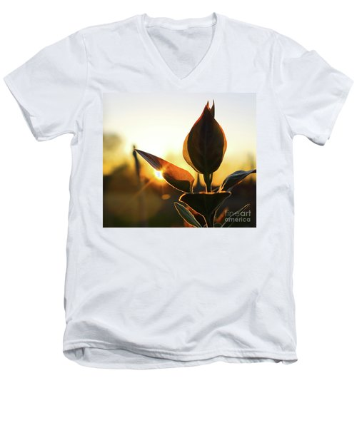 Blooming Lilac At Sunset Men's V-Neck T-Shirt