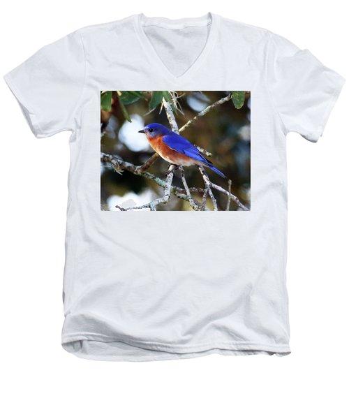 Blue Bird Men's V-Neck T-Shirt by Lamarre Labadie
