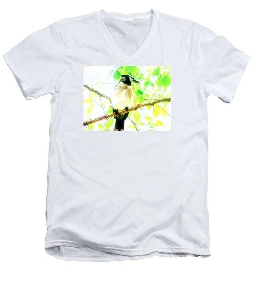 Blue Jay IIi Men's V-Neck T-Shirt