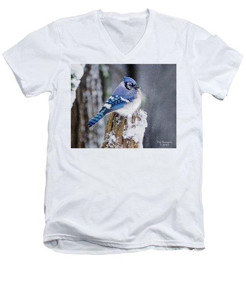 Blue Jay On Snowy Post Men's V-Neck T-Shirt