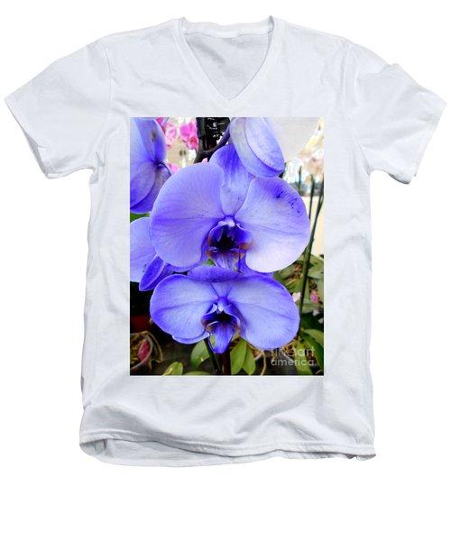 Blue Phalaenopsis Orchid Men's V-Neck T-Shirt