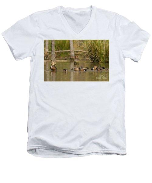 Blue-winged Teal Men's V-Neck T-Shirt