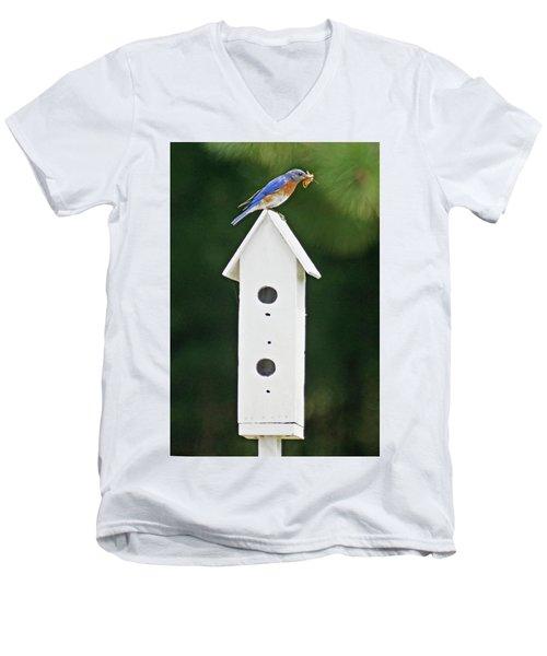 Bluebird Dad Men's V-Neck T-Shirt by Judy Johnson