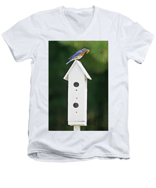 Bluebird Dad Men's V-Neck T-Shirt