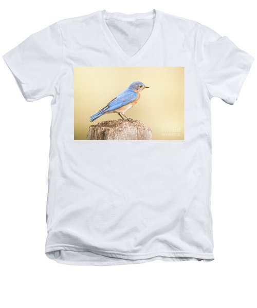 Men's V-Neck T-Shirt featuring the photograph Bluebird On Fence Post by Robert Frederick