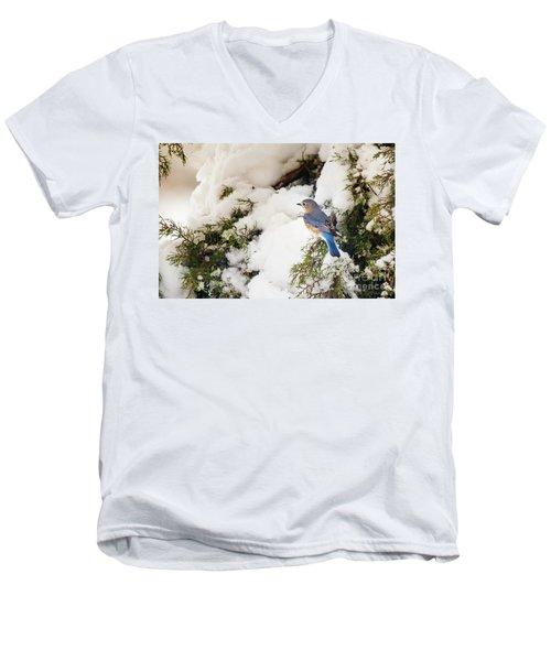 Men's V-Neck T-Shirt featuring the photograph Bluebird On Snow-laden Cedar by Robert Frederick