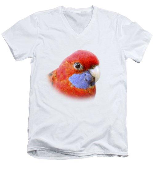 Bobby The Crimson Rosella On Transparent Background Men's V-Neck T-Shirt