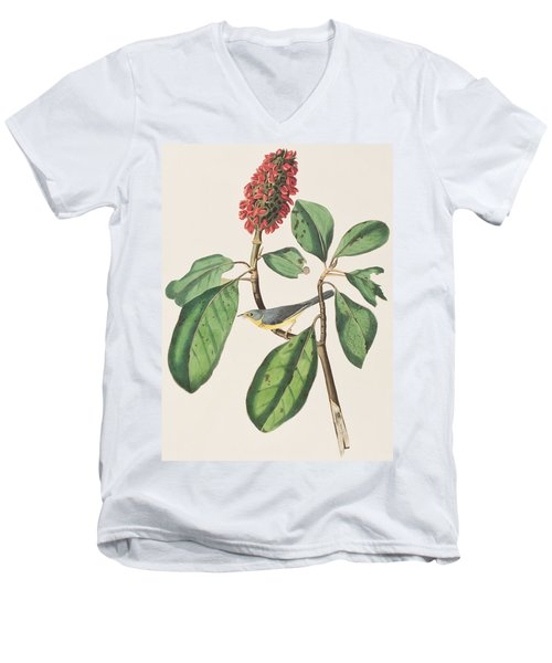 Bonaparte's Flycatcher Men's V-Neck T-Shirt