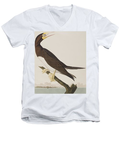 Booby Gannet   Men's V-Neck T-Shirt by John James Audubon