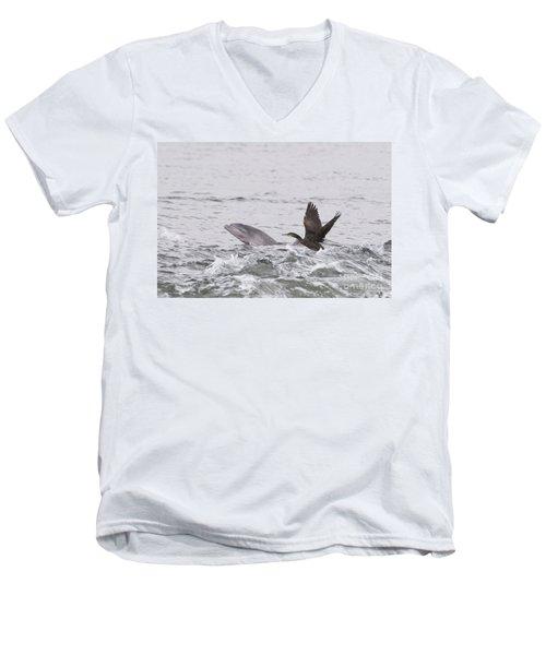 Baby Bottlenose Dolphin - Scotland #10 Men's V-Neck T-Shirt