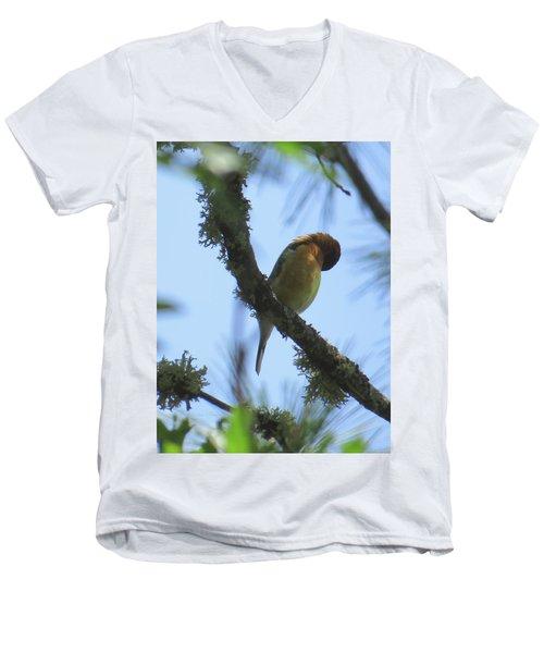 Bird Of Pray - Images From The Garden Men's V-Neck T-Shirt by Brooks Garten Hauschild