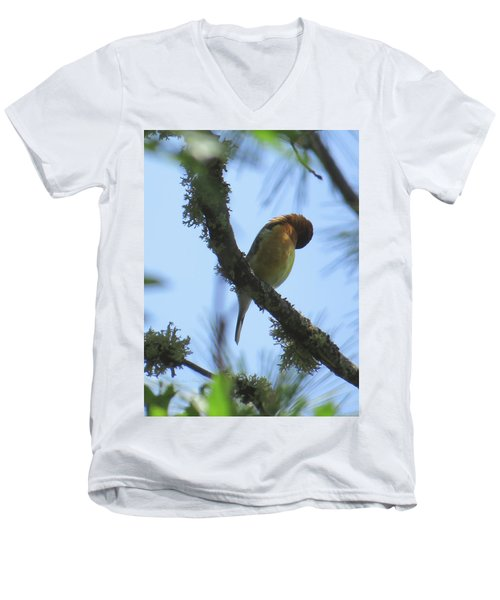 Bird Of Pray - Images From The Garden Men's V-Neck T-Shirt