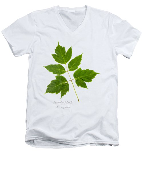 Box Elder Maple Men's V-Neck T-Shirt