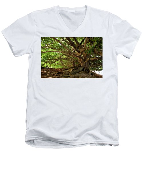 Branches And Roots Men's V-Neck T-Shirt