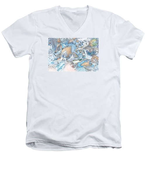 Bridal Veil Fall Men's V-Neck T-Shirt