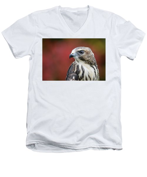 Broad Wing Hawk Men's V-Neck T-Shirt