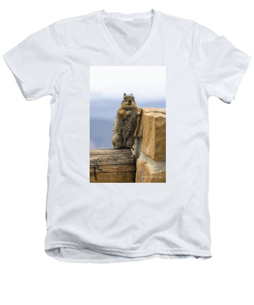 Bryce Squirrel Men's V-Neck T-Shirt