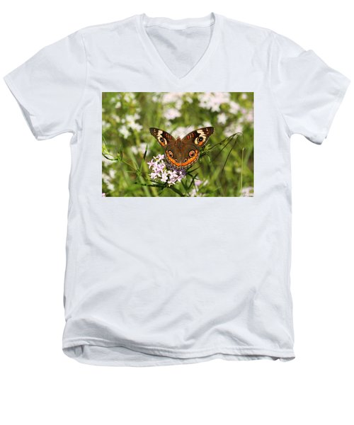 Buckeye Butterfly Posing Men's V-Neck T-Shirt