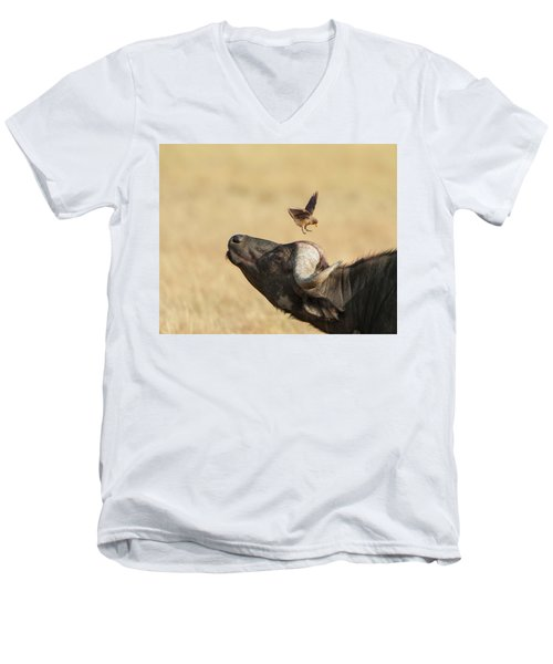 Buffalo And Oxpecker Bird Men's V-Neck T-Shirt