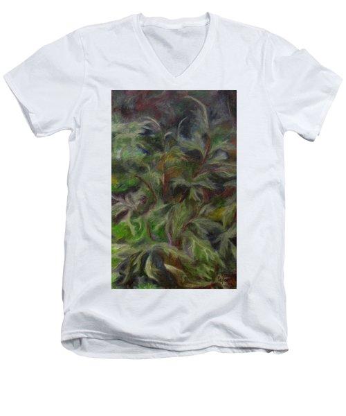 Bugbane Men's V-Neck T-Shirt