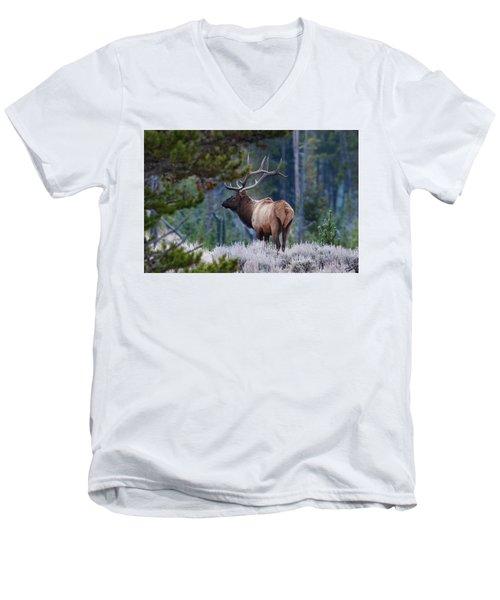 Bull Elk In Forest Men's V-Neck T-Shirt