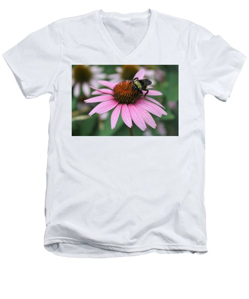 Bumble Bee On Pink Cone Flower Men's V-Neck T-Shirt by Sheila Brown