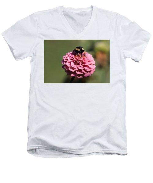 Bumble Bee On Zinnia 2649 Men's V-Neck T-Shirt