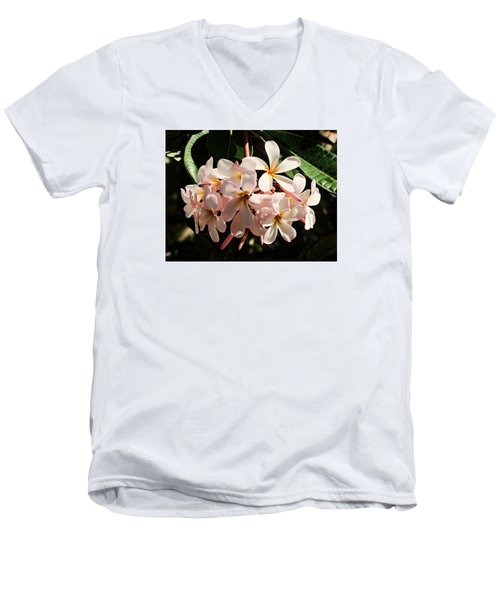 Bunch Of Plumeria Men's V-Neck T-Shirt