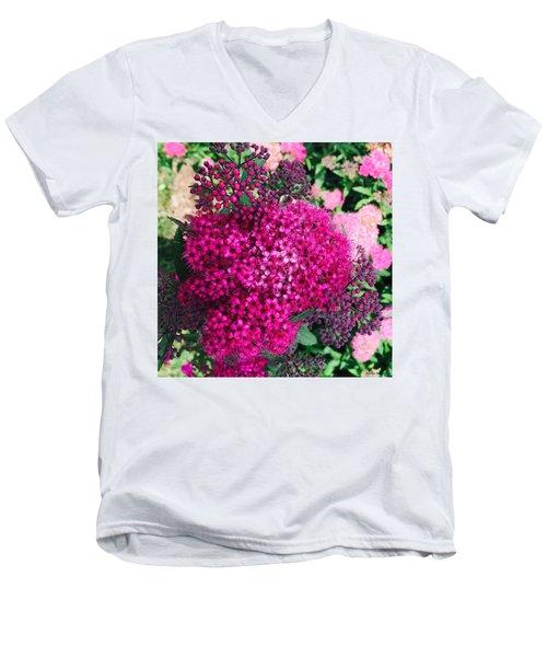 Burst Of Pink Delight Men's V-Neck T-Shirt