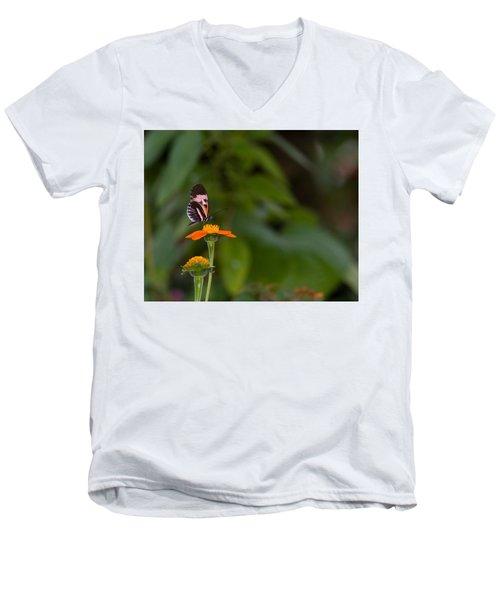 Butterfly 26 Men's V-Neck T-Shirt