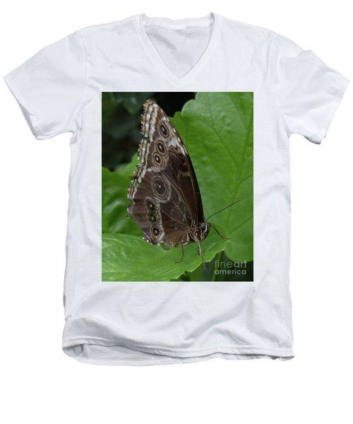 Butterfly 5 Men's V-Neck T-Shirt