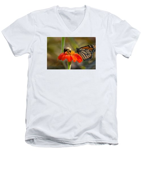 Butterfly And Bumble Bee Men's V-Neck T-Shirt