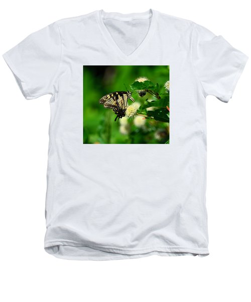 Butterfly And The Bee Sharing Men's V-Neck T-Shirt by Kathy Eickenberg