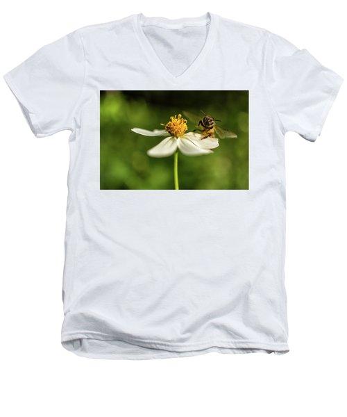 Buzz Off Men's V-Neck T-Shirt