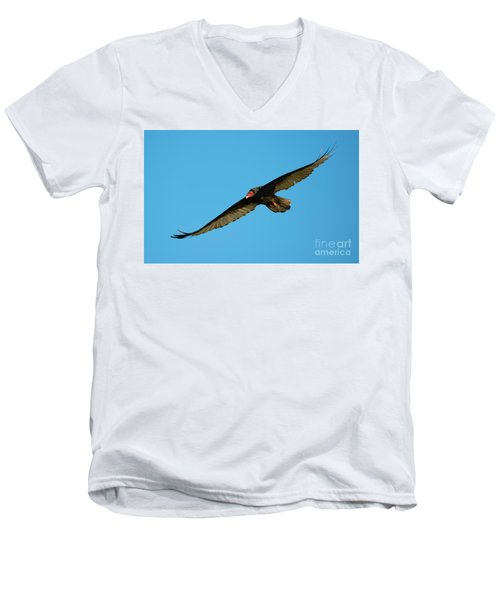 Buzzard Circling Men's V-Neck T-Shirt by Mike Dawson