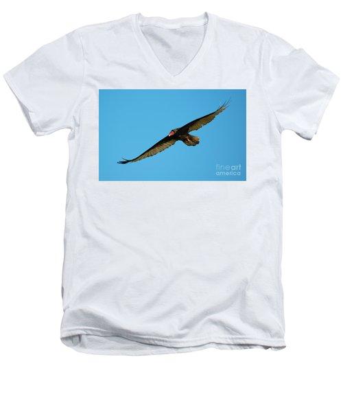 Buzzard Circling Men's V-Neck T-Shirt