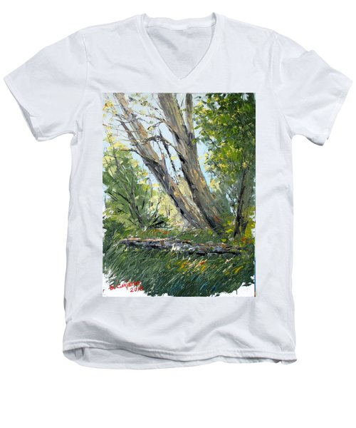 By The River Men's V-Neck T-Shirt