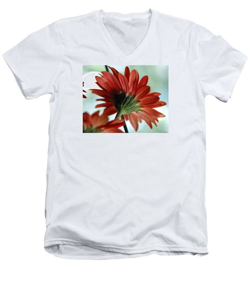 Cabrera Daisy Men's V-Neck T-Shirt