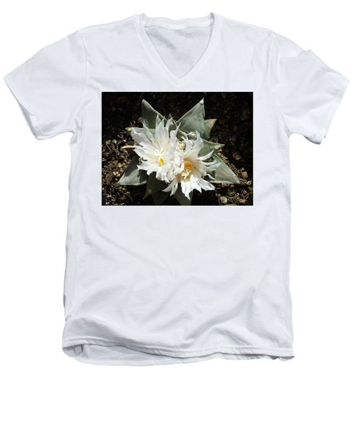 Cactus Flower 9 Men's V-Neck T-Shirt