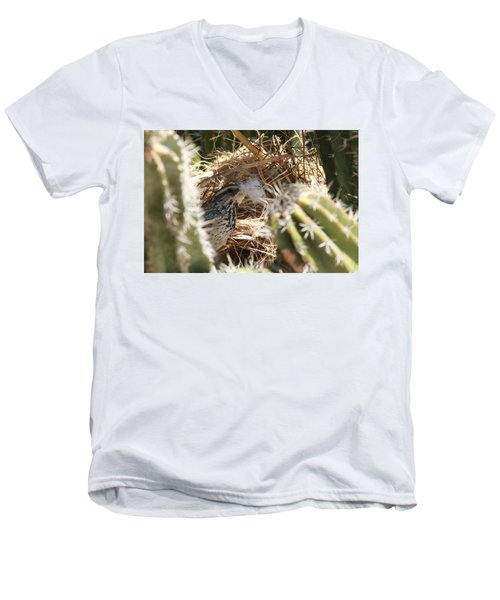 Cactus Wren Feather Men's V-Neck T-Shirt