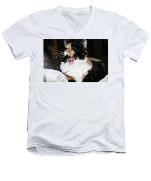 Cal-3 Men's V-Neck T-Shirt