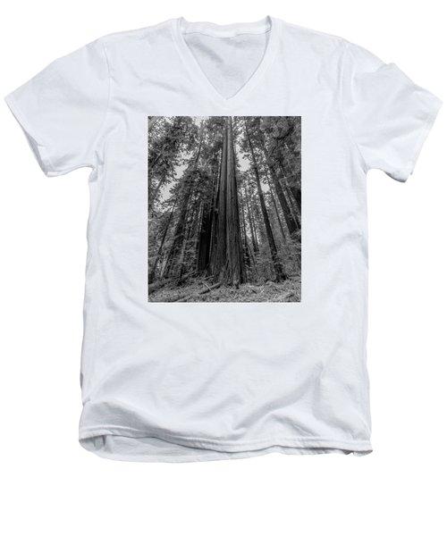 California Forest Men's V-Neck T-Shirt