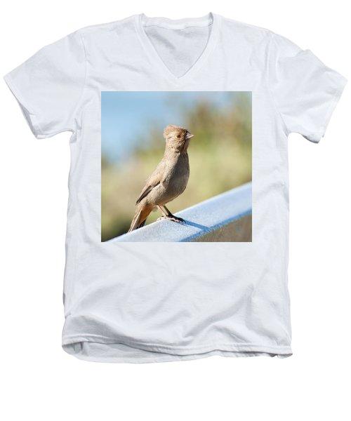 California Towhee ? Men's V-Neck T-Shirt by Daniel Hebard