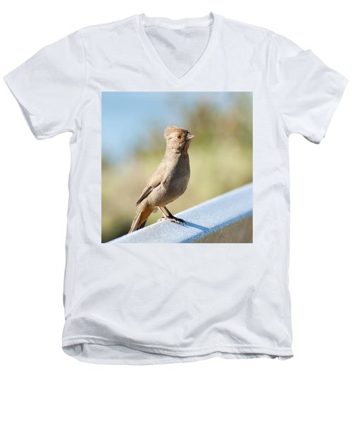 California Towhee ? Men's V-Neck T-Shirt